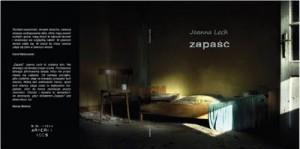 "Na marginesie debiutu (Joanna Lech, ""Zapaść"")"